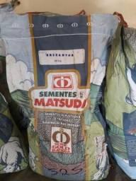 Saco de semente de marandu Urichioa Brizantha 20kg