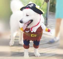 Roupinha para cachorro modelo pirata com chapéu