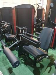 Cadeira extensora/ Flexora conjugada