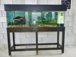 Vendo aquário + móvel + tampa