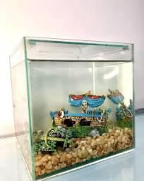Aquario Beteira