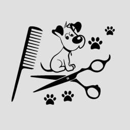Contrata-se tosador(a) e banhista