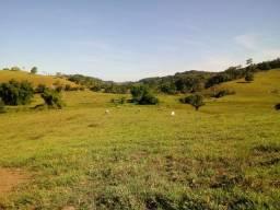 Fazenda Nazaré -St.Antonio-BAHIA-200 tarefas