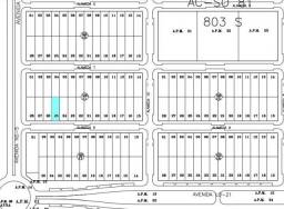 Terreno à venda, 660 m² por R$ 100.000 - Plano Diretor Sul - Palmas/TO