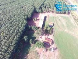 Fazenda no Prata - MG com 144,62 hectares ou seja, 29,88 alqueires