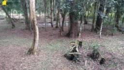 Terreno para Venda em Lagoa Tijucas do Sul-PR