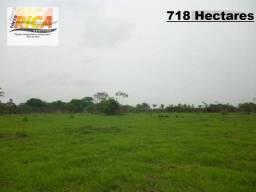 Fazenda com 718 hectares a venda-Cód.FA0032