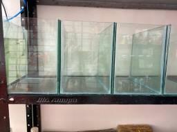 Promoção em aquários (apenas a caixa de vidro)
