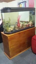 Vendo Aquario em perfeito estado!