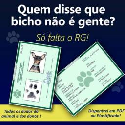 RG Pet nas cores originais para seu animal