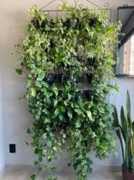 Suporte para plantas completo