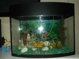 Vendo ou troco no aquário ele leva quase dos galões de água mineral