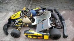 Kart Shifter Mini 2011