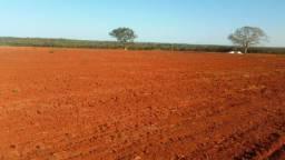 8271 | Fazenda à venda com 1 quartos em ZONA RURAL, DOIS IRMÃOS TOCANTINS