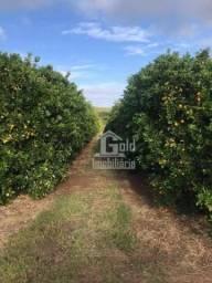 Fazenda à venda, com 370 alqueires por R$ 52.000.000 - Zona Rural - Itapetininga/SP
