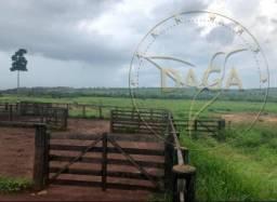 Título do anúncio: Fazenda a venda no Pará em Conceição do Araguaia- 1003 Alqueires