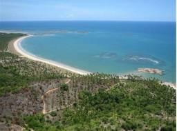 Fazenda na beira mar de Tamandaré ? Ideal para investidores