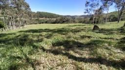 Terreno em Piracema 30 hectares