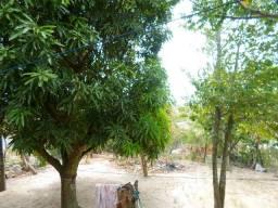 Sítio em Morro Grande /Araruama