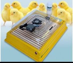 Chocadeira Premium Ecológica 130 ovos.