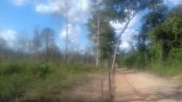 Área 40 hectares