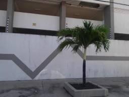 APTO no Edifício Turmalina
