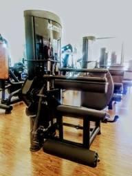 Musculação, academias, equipamentos fitness