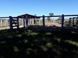 8271 | Fazenda à venda com 3 quartos em ZONA RURAL, GENERAL CARNEIRO