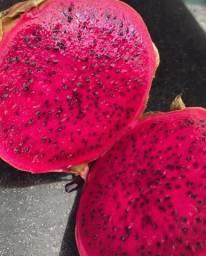 Vendo polpa de pitaya