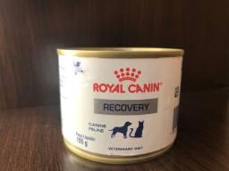Recovery da Royal Canin