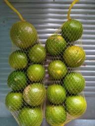 Limão Galego pele fina