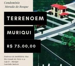 Laurinho Imóveis - Terreno em Muriqui, Mangaratiba