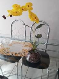 Orquídeas artificiais à pronta entrega.