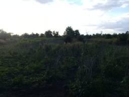 Fazenda 12 alqueires.(formoso do araguaia)