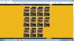 Fechado lote (6 Garrotes Senepol PO, GENÉTICa Superior (36 mil em 36 parcelas)