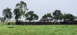 Fazenda 161.5 alqueires ( 782 hectares ) Nova Xavantina-MT
