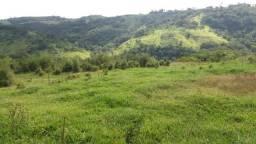 Alugo Fazenda - Roncador
