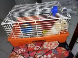 Hamster e gaiola