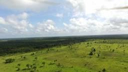 Terra pra Compensação ,670 alqueires (4,84 hectares o alqueire) por 5 mil reais o alqueire