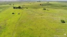 Fazenda em Linhares ES com 1.177,48 hectares (243,28 alqueires)