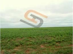 Brasnorte MT Fazenda 34.600 Hectares R$ 300.000.000,00 Ref. FMT-6