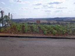 R$ 60.000 Terreno no Parque Bela Vista com 443 m² e frente com 15 metros em Apucarana