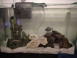 Vendo aquário 95L - somente vidro