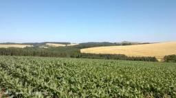 Arrendamento de fazendas para lavoura ou pecuária