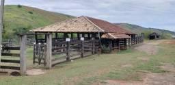 Fazenda 12 alqueires em Governador Valadares/MG