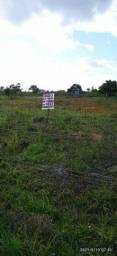 Vende terreno