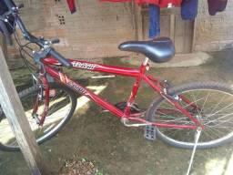 Bicicleta Flash