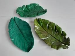 Folhas e vasos