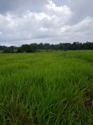 Fazenda de 1.086 hectares pra boi