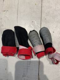 Sapatos cachorro P
